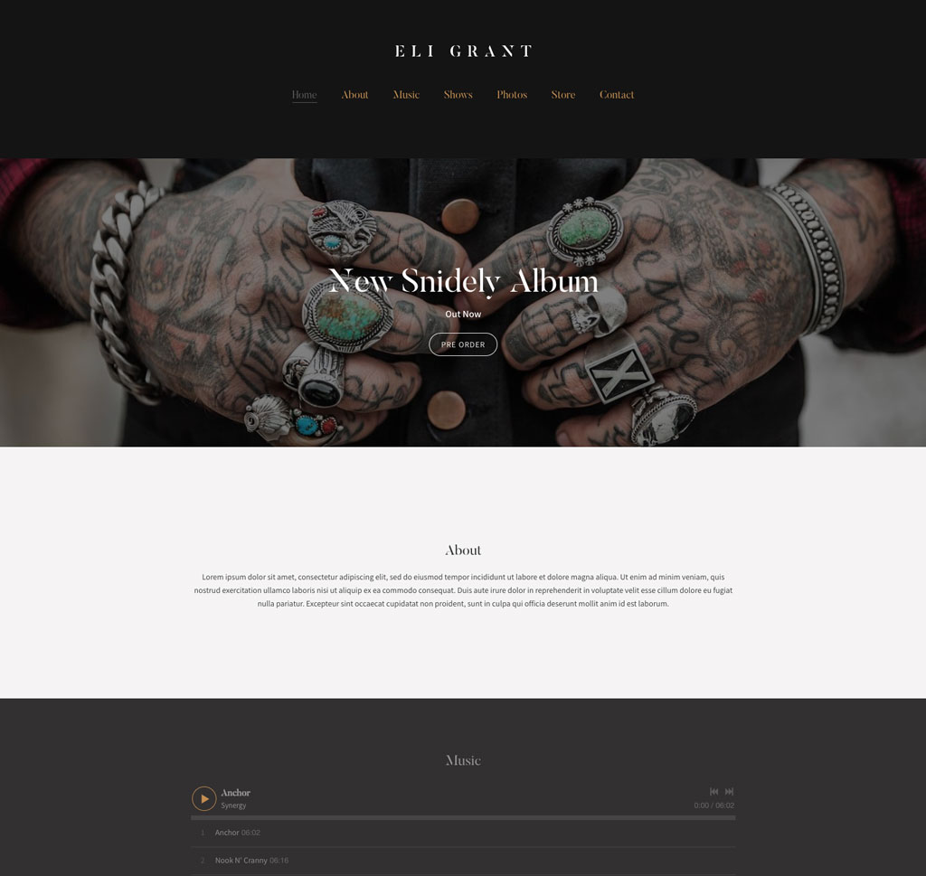 Dark elegant band website template