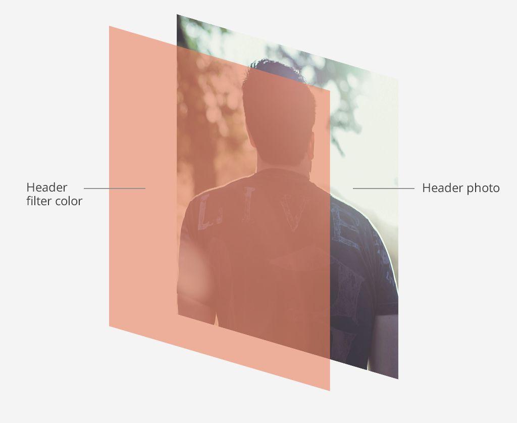Color diagram Bandzoogle website design