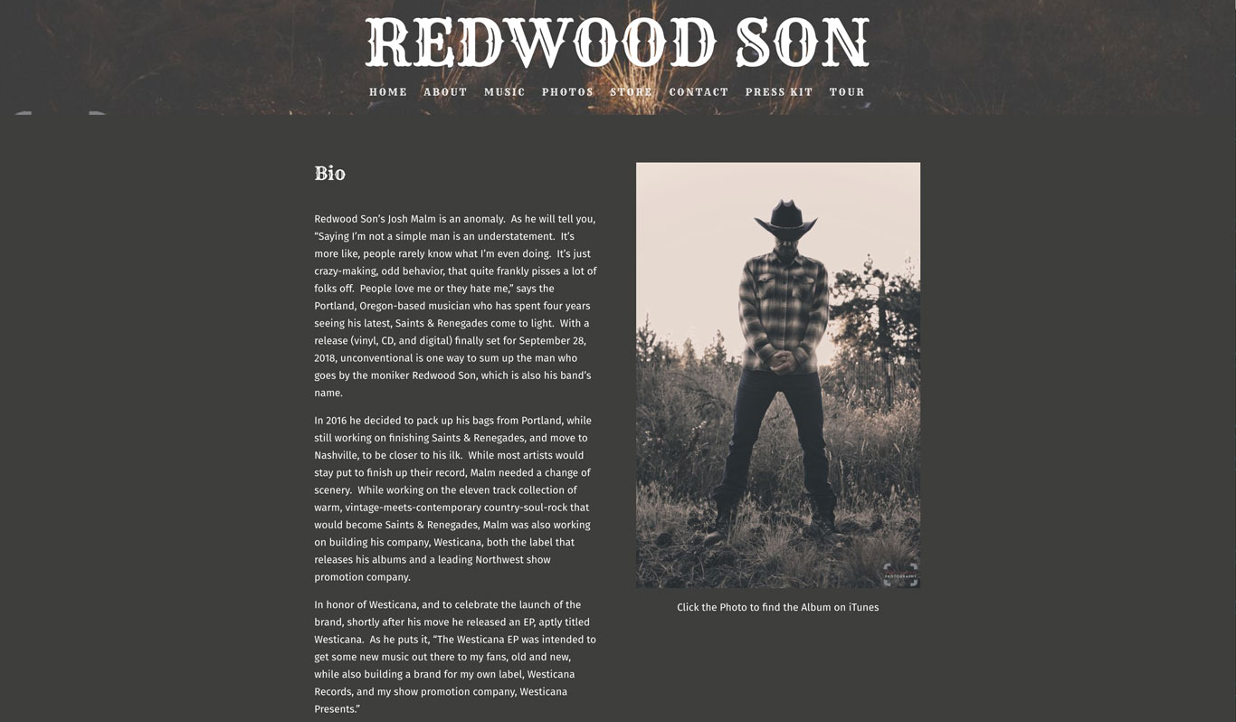 Musician website bio example