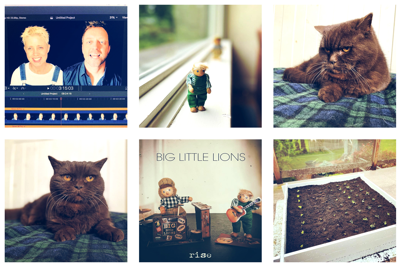 Advertise your music on Instagram - Big Little Lions