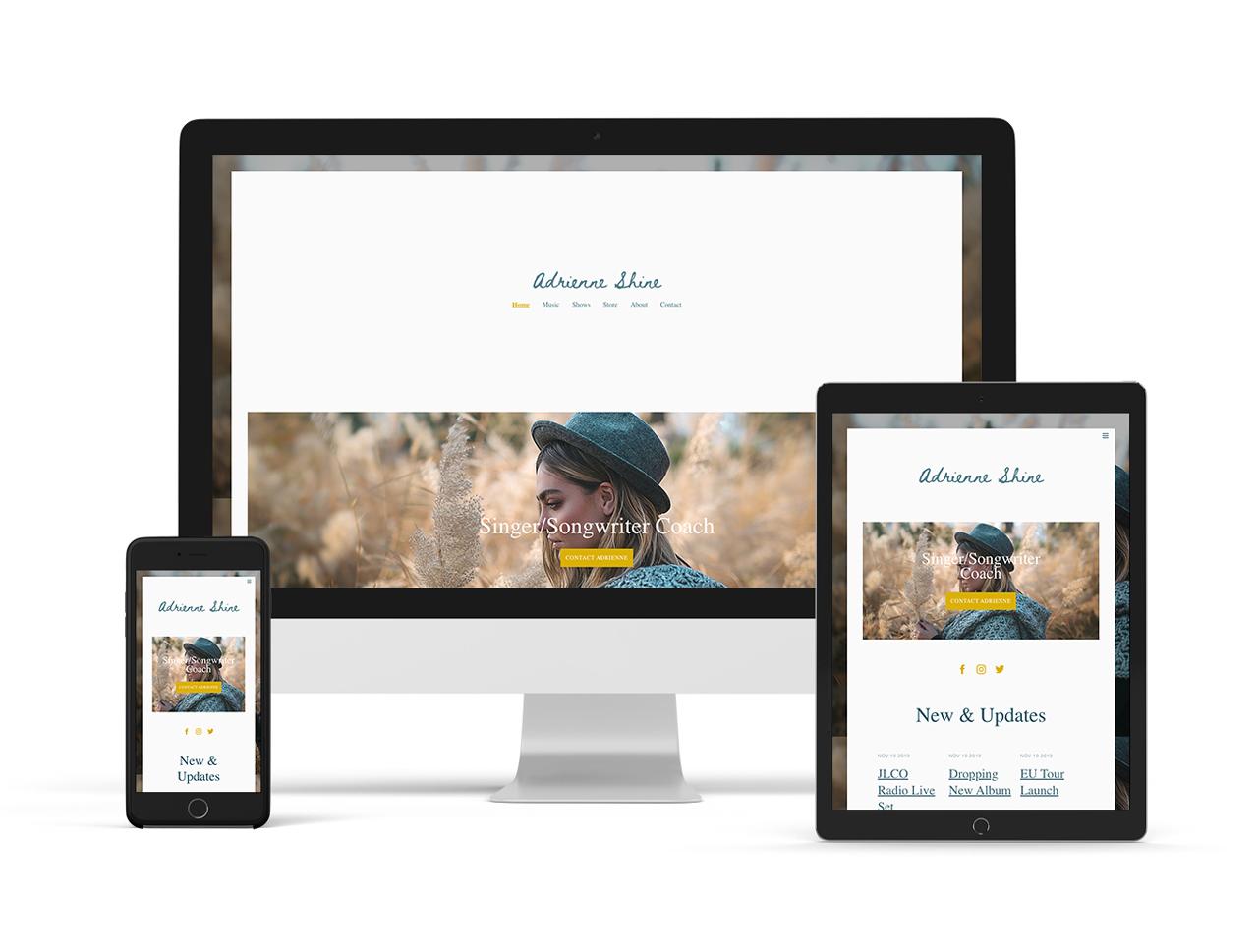 Musician website template: elegant version example