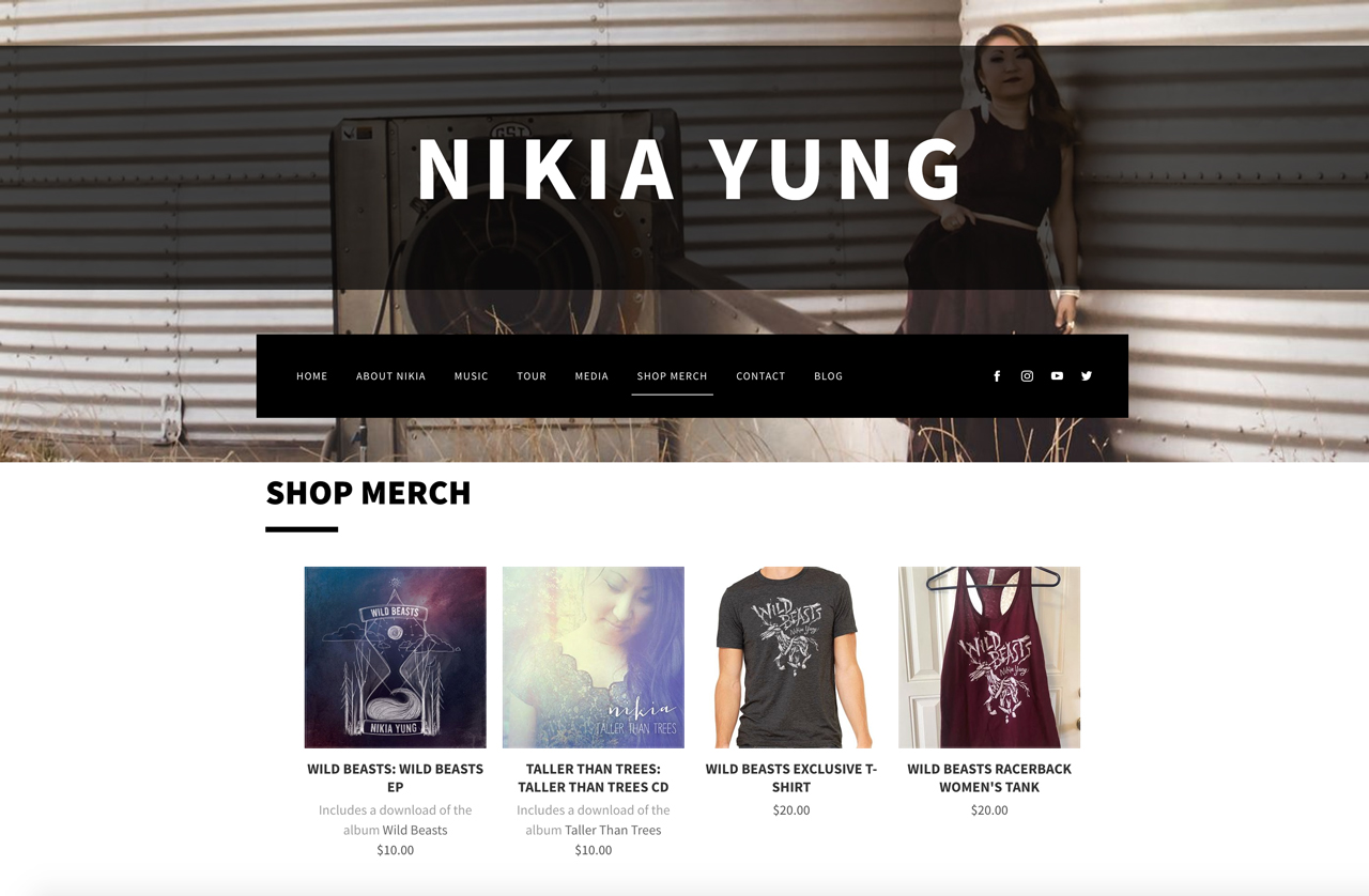 How to design a great songwriter website - store page