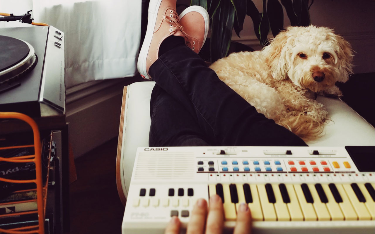 Wellness and self-care tips for musicians: spend time with animals