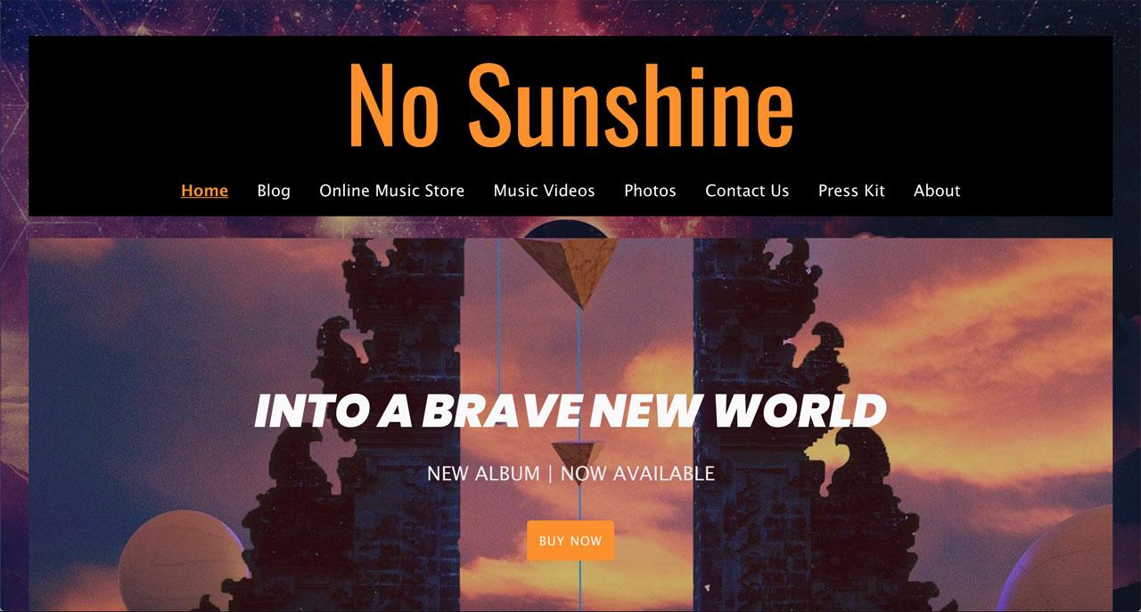 Best music website designs example - album artwork