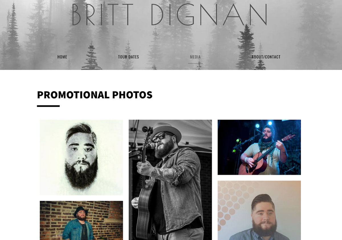 How to design a great singer songwriter website Photos page